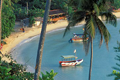 Tours For Colombo & Kandy, Sri Lanka From Aed 1609 Per Person